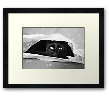Hank in Hiding Framed Print