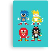 Sonic and Friends Canvas Print