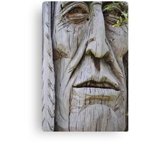 native vision Canvas Print