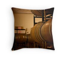 Aging and Perfection Throw Pillow