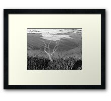 a dry winter on the coast Framed Print