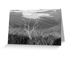 a dry winter on the coast Greeting Card