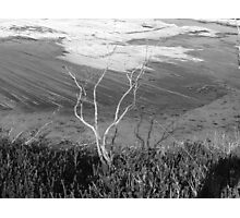 a dry winter on the coast Photographic Print