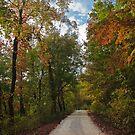 Colorful Pruitt's Path by Lisa G. Putman