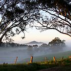 ~ A Morning Mist ~ by LeeoPhotography