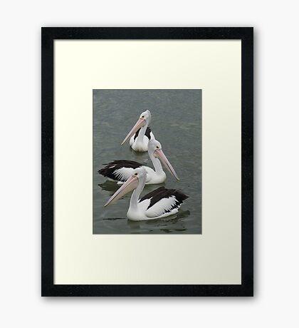 3 in a Row Framed Print
