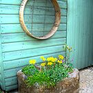 Rustic Mini Garden by Rewards4life