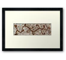 I've BEAN Inspired #3 Framed Print