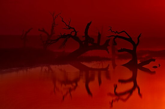 """""""Silhouettes in the Mist"""" by Phil Thomson IPA"""