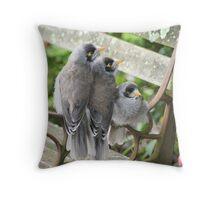 Pot Family (noisy miner chicks) Throw Pillow