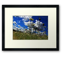 Low down landscape Framed Print