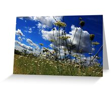 Low down landscape Greeting Card
