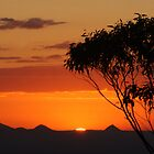 Gold Coast Hinterland Sunset by Justin Gittins