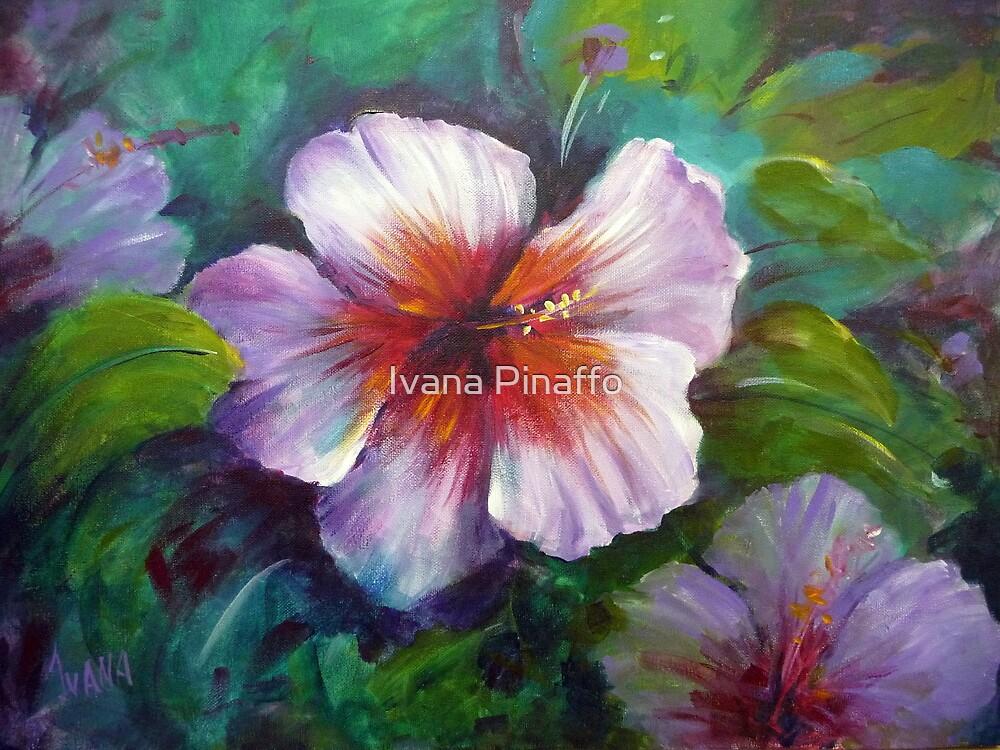 White Hybiscus by Ivana Pinaffo