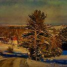 Rural Winter In Vermont by Deborah  Benoit