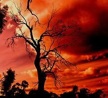 red sky at night by fazza