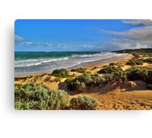 Looking north up the coast Canvas Print