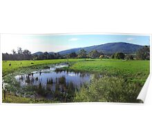 Yarra valley 1 Poster