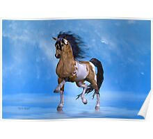 Buckskin Paint Stallion Poster