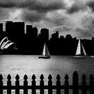 Sydney Sails by Annette Blattman