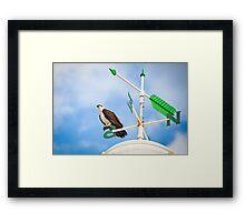 Osprey on a compass Framed Print