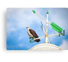 Osprey on a compass Metal Print