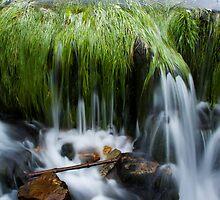 Flowing Water by Stepan Lorenc