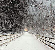Capstone in Winter by larry flewers