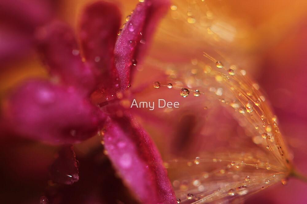 Sweetness by Amy Dee