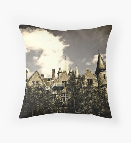 Un Chateau Belge Throw Pillow