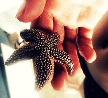 starfish by nicolelauren