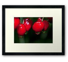 Berry Wet Framed Print
