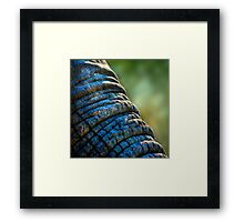The Elephant's Wrinkles Framed Print