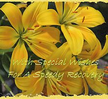 With Special Wishes For A Speedy Recovery by Vickie Emms