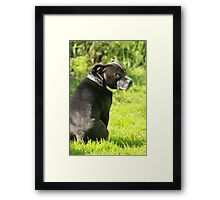 What Are You Saying About Me?? Framed Print