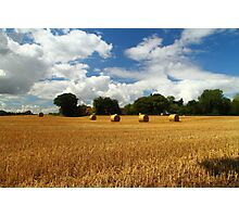 Rural Delight Photographic Print
