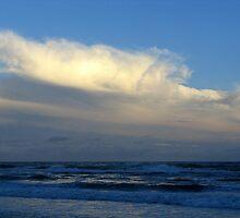 Beach Walk - Destin Beach Florida by Tony Wilder