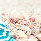 Seashells by mariakallin