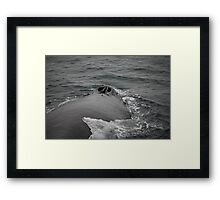 down the blow hole... Framed Print