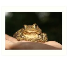 Toad in the hand Art Print