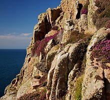 Heather Cliffs by Karen Millard