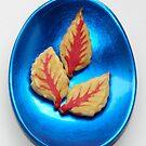 Maple Syrup Biscuits/cookies by Kiriel