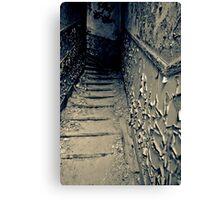 Deeper ~ Chateau Noisy Canvas Print