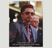 Tony Stark Fact #115 by Ted Dolphin