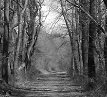 the Gravel Road by nastruck