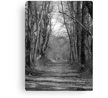 the Gravel Road Canvas Print