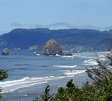 Haystack Rock, Cannon Beach, Oregon by Loisb