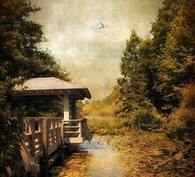 The Dock by Jessica Jenney