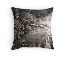 Lake Sticks and Mist Throw Pillow