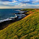 Sunlit Headland by Stephen Ruane